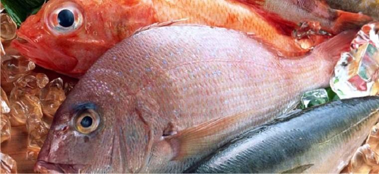 comprar pescado online